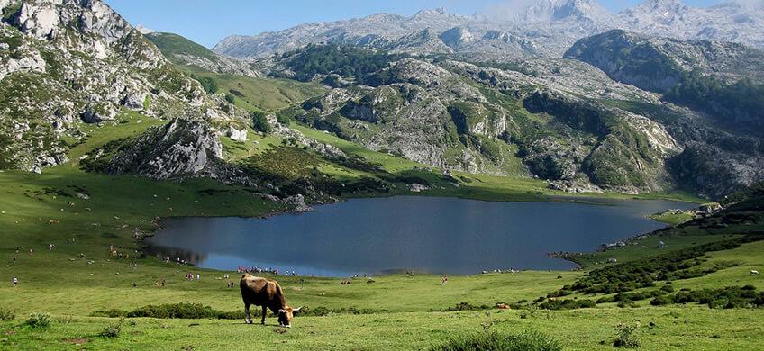 La carretera de los lagos de Covadonga es una de las carreteras más espectaculares de Esapaña