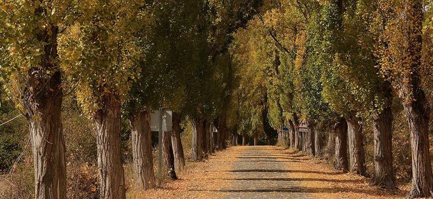 La carretera que va de Plasencia a Soria es una de las carreteras más espectaculares de Esapaña