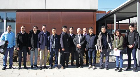 visita coreanos